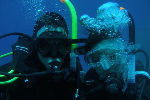 Dive team!